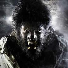 Wolfman010