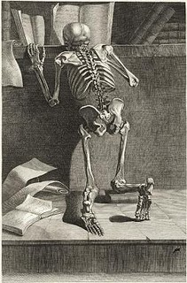 Skeleton_kneeling