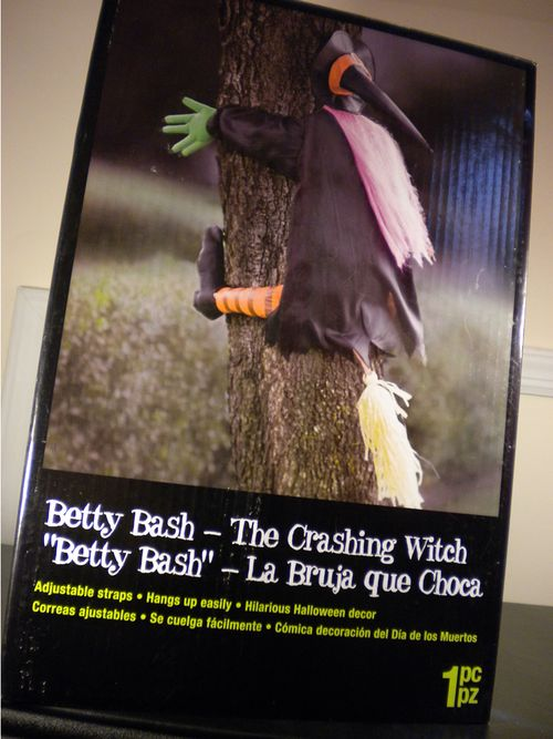 halloween crashing witch