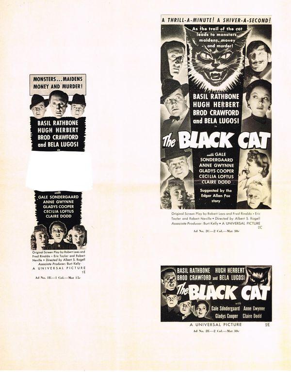 Black Cat Folders