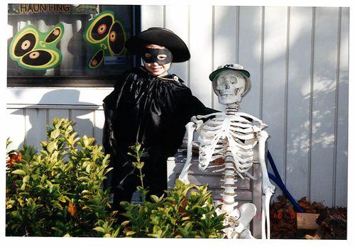 halloween zorro costume