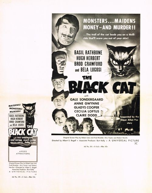 the black cat pressbok