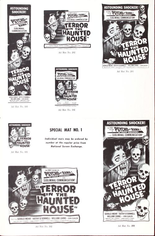 Terror-in-the-haunted-house-3