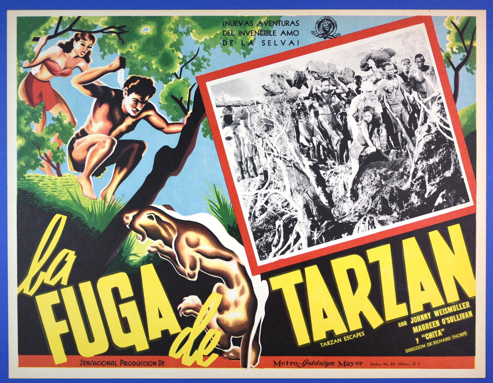 Mexican Lobby Card: Tarzan Escapes (1936) (From Zombos' Closet)