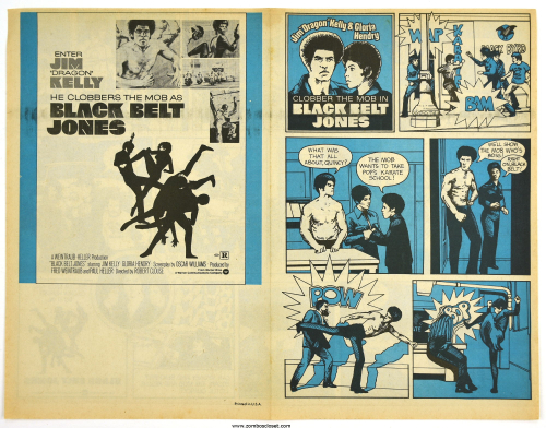 black belt jones movie herald