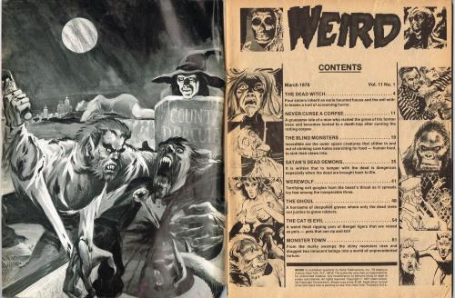 Weird Issue V11-1_000001