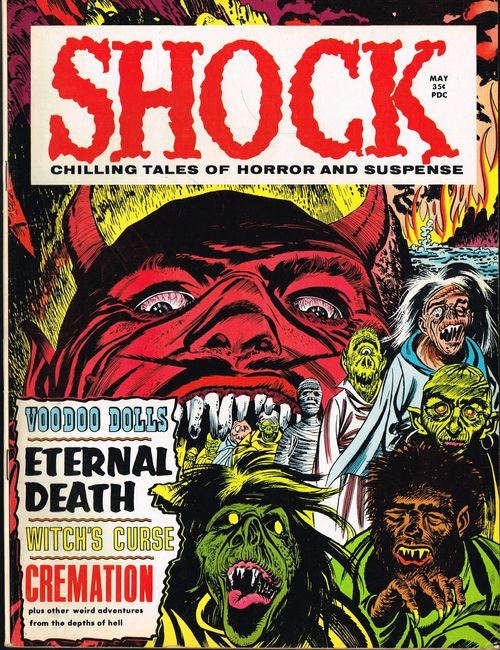Shock-cover
