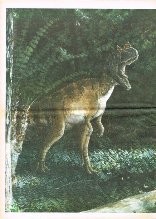 Dinosaur-times-22