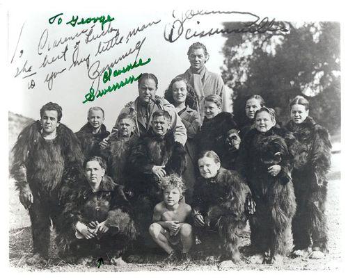 clarence swenson gorilla group
