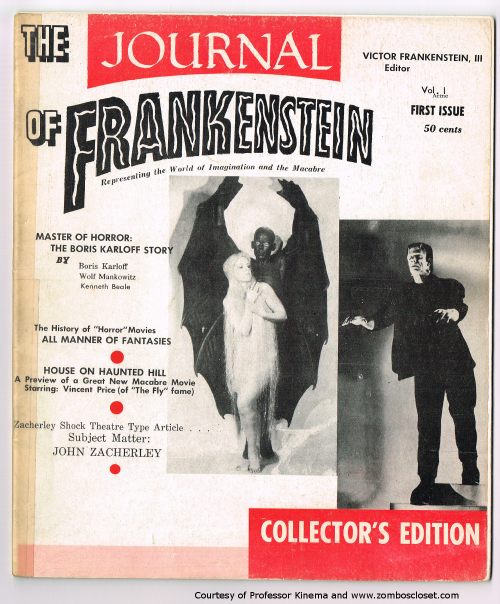 Journal of frankenstein 1