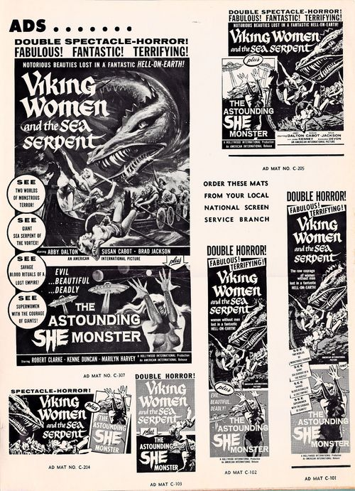 Viking women pressbook3