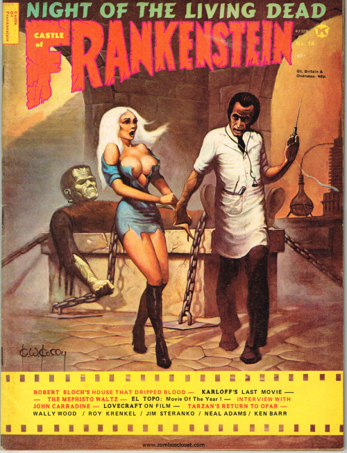 Castle of Frankenstein 18