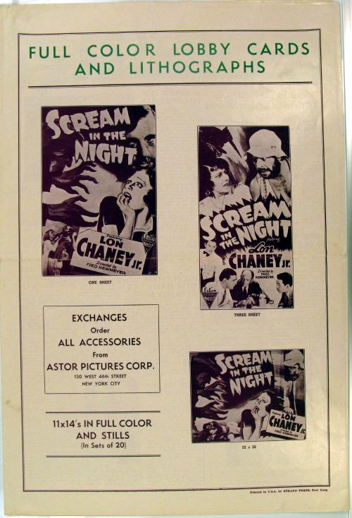 Scream in the night 1