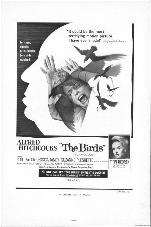 The Birds010