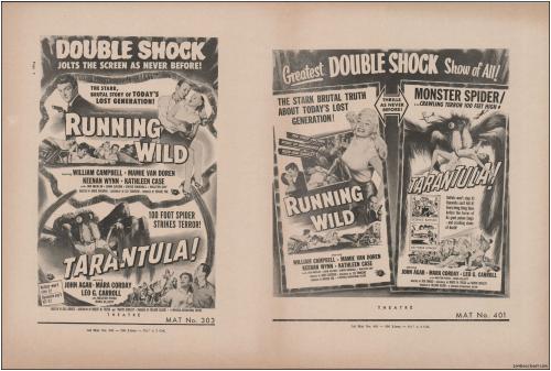 DB Shock Show Tarantual Pressbook03