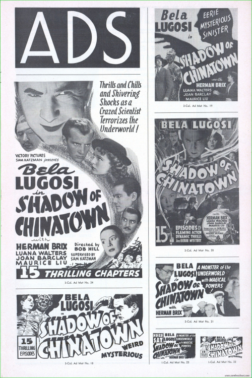 Shadow of Chinatown10