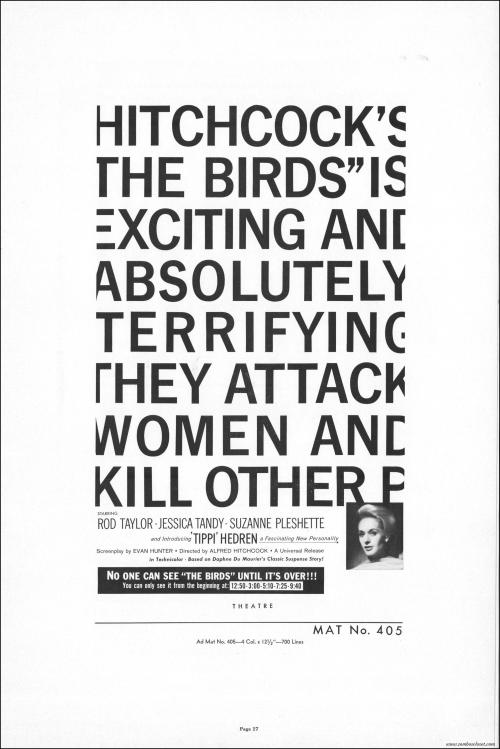 The Birds018