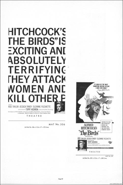 The Birds027