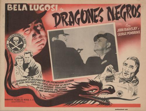 Dragones Negros jpg